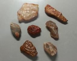 (酷精品) 天然 戈壁 原石 原礦 原色 可擺 7 星陣 招財開運 稀有