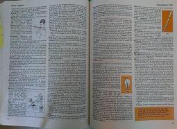 McMilliam英英字典