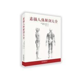 2【素描 速寫】素描人體解剖大全(是一本非常實用的素描人體解剖大全,1200餘幅圖例360度全方位展示人體素描細節)