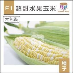 園藝倉庫-F1超甜水果玉米種子(大包裝)-雙色水果玉米,多汁香甜適合鮮食