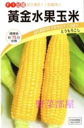 【野菜部屋~】N05 黃金水果玉米種子30粒 , 果穗比一般的大 , 甜度高 , 品質棒 , 每包12元 ~