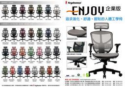 HAW JOU(萬元以下銷售冠軍)ENJOY 121 企業版(新增腰靠)高背全網椅(共7色可選)