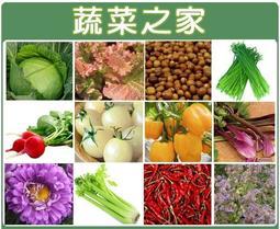 【蔬菜之家】蔬菜花草種子總匯400種以上(每包12元)