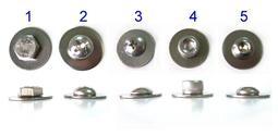 YJF - 白鐵螺絲(不鏽鋼螺絲) 牌框螺絲/不銹鋼大牌螺絲/牌照螺絲/7碼車牌車牌螺絲 1組2入