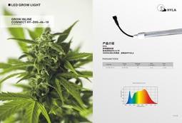 新一代 植物燈 全光譜 防水燈管 4尺T8 仿太陽光譜 有利植物生長 可無光環境使用 花卉 果實 葉菜 多肉植物