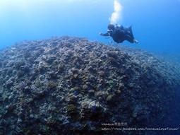PADI 高氧潛水課程,報名送第一次水中攝影就上手 書一本
